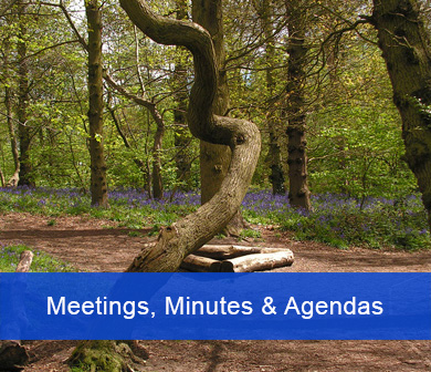 Meetings, Minutes and Agendas